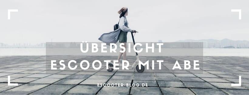 Scooter mit ABE